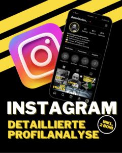 Instagram Profilanalyse